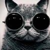 Craggle x Anneka-Shut Her Sweet Talk (AppleBeast mashup/edit)
