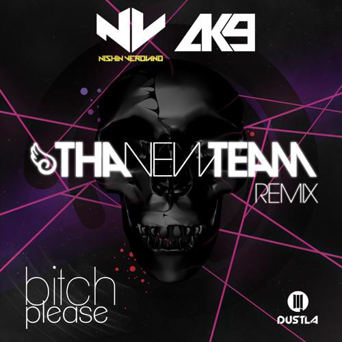 Nishin Verdiano and AK9 - Bitch Please (Tha New Team Remix)