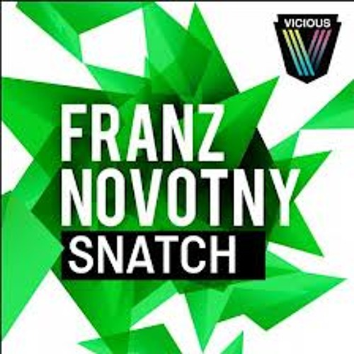 Franz Novotny - Snatch (Original Mix)