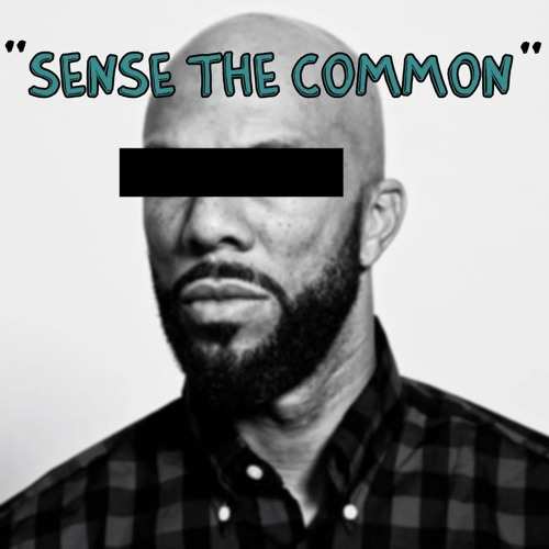 Scheibe & Waslewski - Sense The Common (Unsigned - Unmastered snippet)