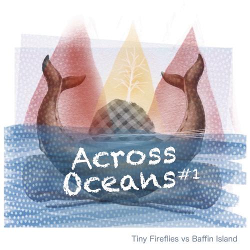 Tiny Fireflies - So Sad To Say Goodbye (Baffin Island remake)