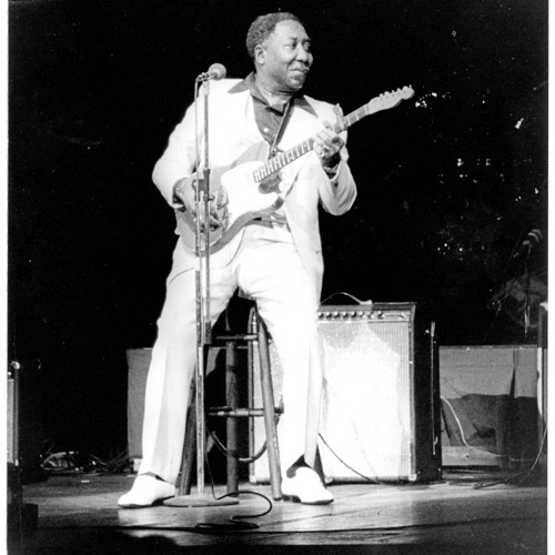 Chicagoans want Muddy Waters' home to stay