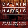 Calvin Harris & Florence - Sweet Nothing