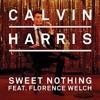 Calvin Harris & Florence - Sweet Nothing MP3 Download