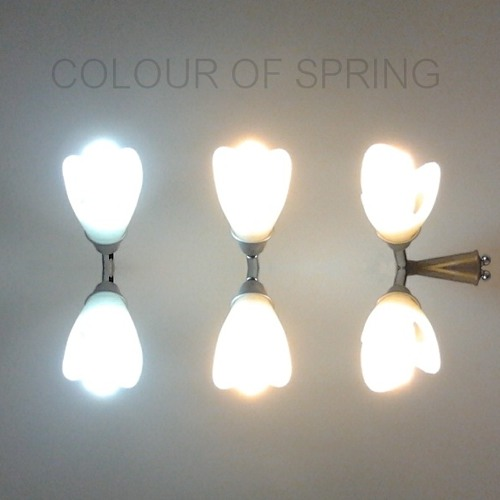 Lemuriams-Colour of Spring