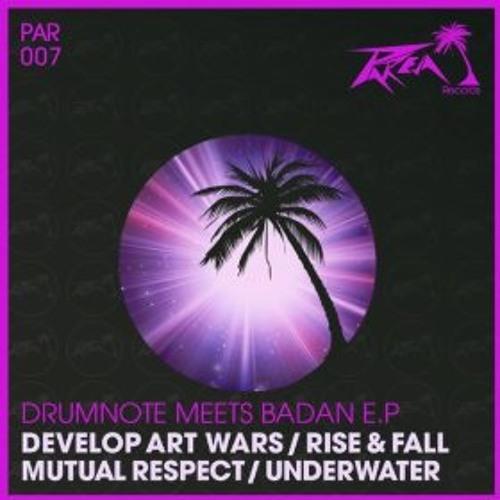 dmb - Develop Art Wars (Original Mix) drumnote meets Badan EP : Pareja Records