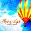 Tomtrax vs. D-Vibes - Flying High (DualXess Remix) / Lyrics&Voice by KateMaerz