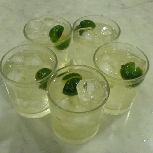 Gin & Tonic's