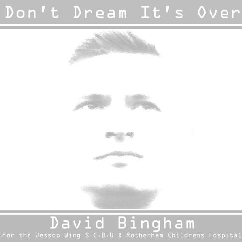 DAVID BINGHAM-DONT DREAM ITS OVER - CHARITY SINGLE