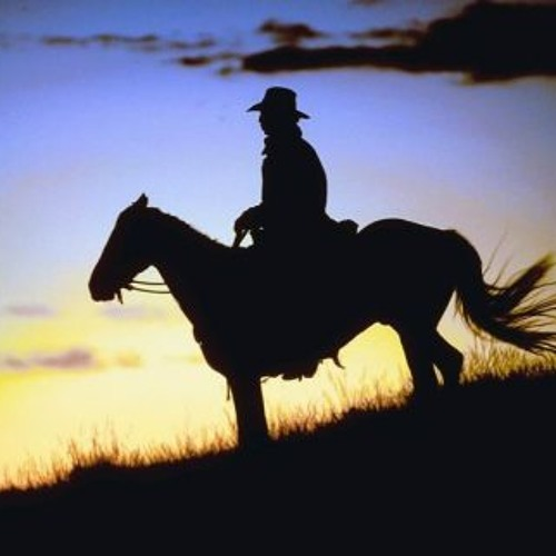 Cowboy (Will Lead The Way)