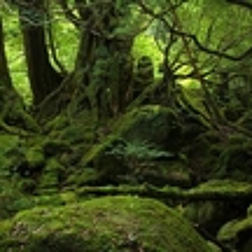 James Monro - Ambientworkx5