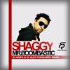 Shaggy – Mr. Boombastic (DJ Haipa & DJ Alex Pushkarev Remix)