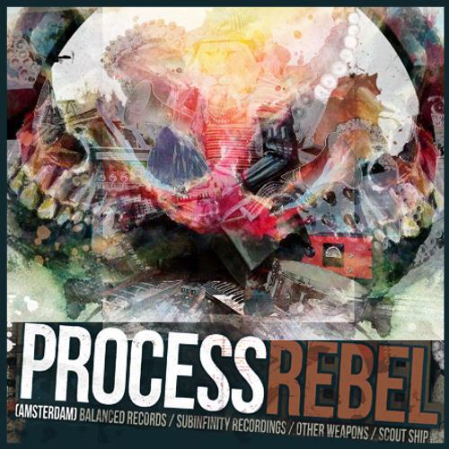 Process Rebel 2013 Q1 Mix