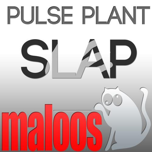 Slap (original mix) [Maloos Music]