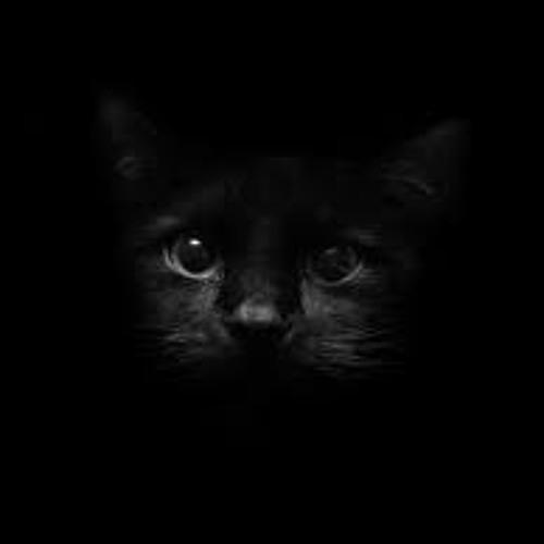 Max and the Moon - Black Cat (Funkform rmx)