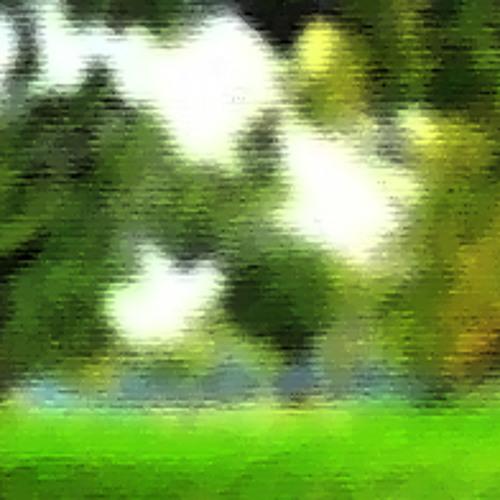 Earversible - Orchard