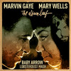 Marvin Gaye vs Mary Wells vs The Carpenters vs The Album Leaf - Baby Arrow