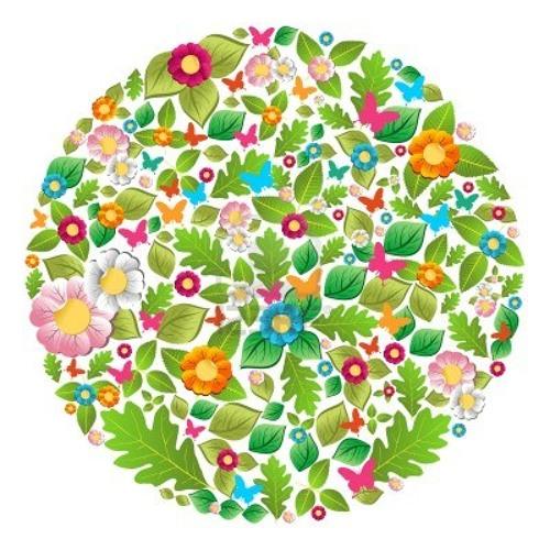 Olaf Stuut - Craving Spring Mix