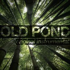 Old Pond [Original Acoustic Instrumental]