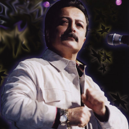 Shahrokh - Faryad (Live in Concert at Cabaret Tehran)