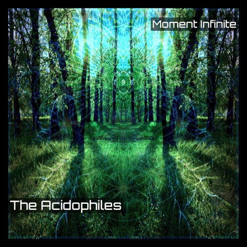 Moment Infinite by The Acidophiles