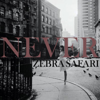 Zebra Safari - Never Ft. Goofy Mane