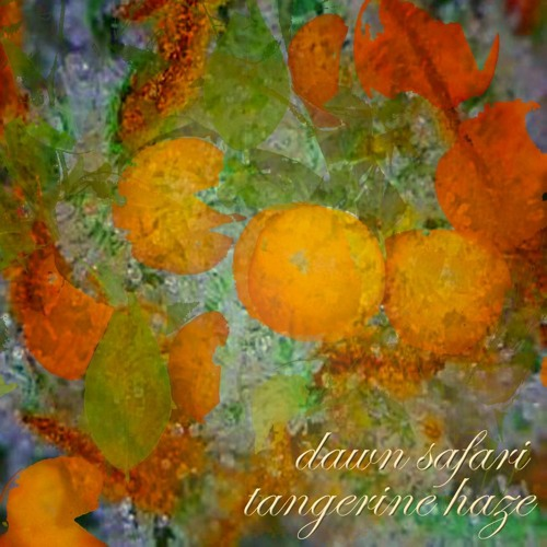 Dawn Safari - Tangerine Haze (Tanner Caldwell Remix) [DL in Description]