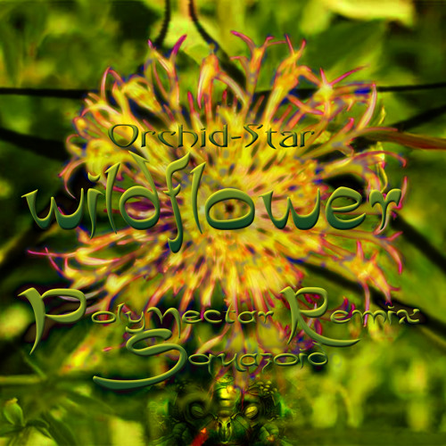 Orchid-Star -Wildflower- Polynectar Rmx ( free download )