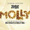 Tyga - Molly [Feat. Wiz Khalifa] | Jiaer Lavon (www.youtube.com/TheJiaerLavonShow)