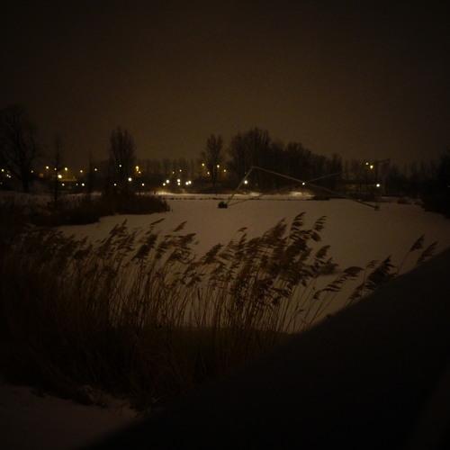 Arjuna Schiks - Vinternatten