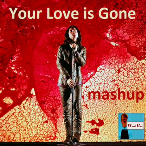 WoodEar - Your love is gone (UNKLE vs THE DOORS) mashup
