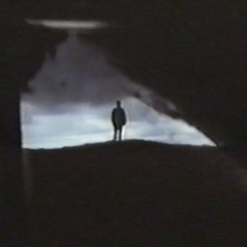Andy Fink - Dead Finks Don't Talk Theme