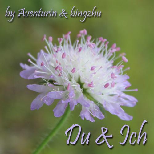 Du & Ich          Aventurin & Bingzhu (Collab)