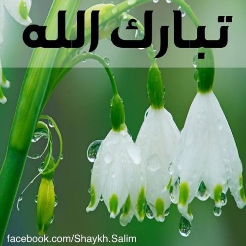 رددوا بسم الله ما شاء الله. مع الشيخ الدكتور سليم علوان