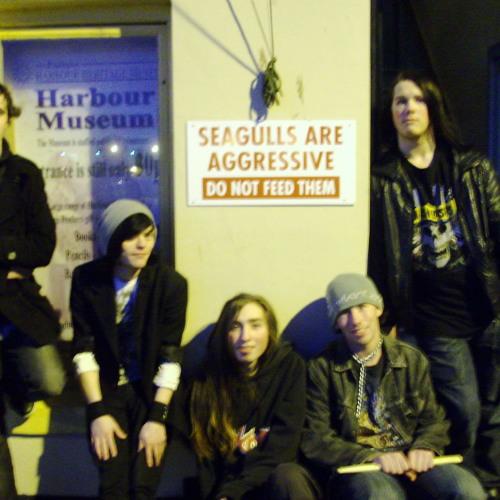 Black Crow (Live)