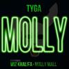 Tyga Molly (Instrumental)