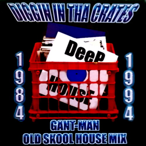 Diggin' In Tha Crates (Old Skool House Mini Mix)
