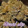 Synthex - Stoned Step (Original Mix) mp3