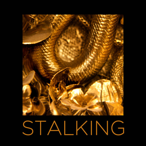 Black Madonna ft. Dida - Stalking
