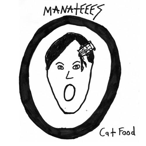 "Manateees ""Cat Food"" // 7"" Out Now On Goner Records"