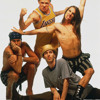 Red Hot Chili Peppers - Can't Stop MP3 Download