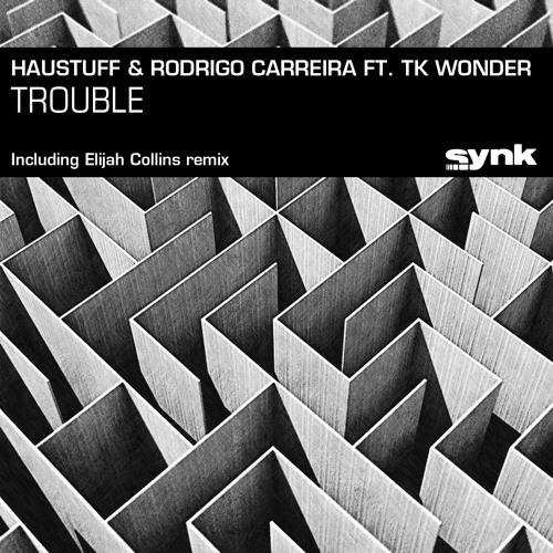 Haustuff & Rodrigo Carreira feat. TK Wonder- Trouble (Original Mix)
