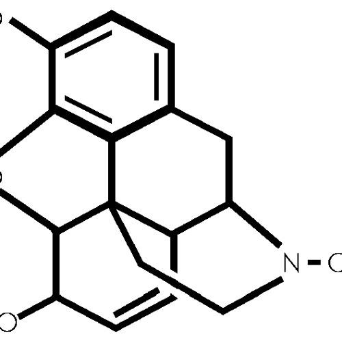 shrOOmix - MORPHIUM 188bpm (WIP)