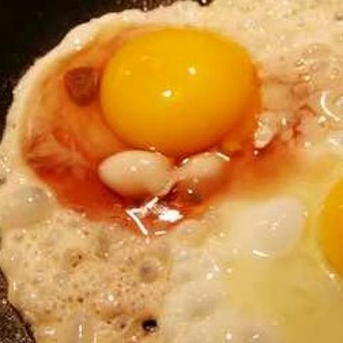 Nasty Egg