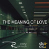 The Meaning Of Love - R. Cory Johnson