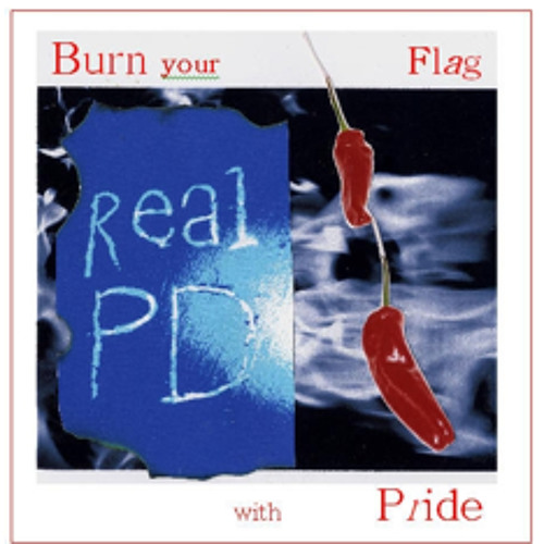 Burn Your Flag with Pride