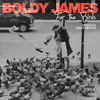 Boldy James - For the Birds