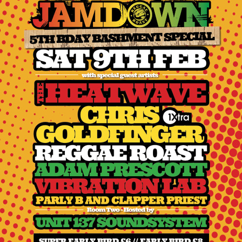 Chris Goldfinger Promo Mix - Reggae Roast 5th Birthday Bash @ Plan B - 09.02.2013