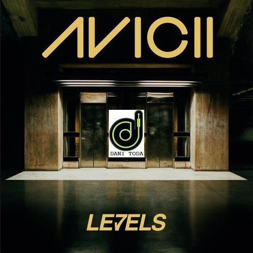Avicii-Levels(Dani Toda Private remix)