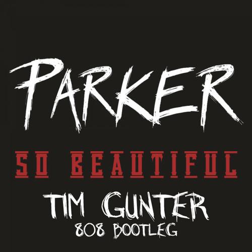 Parker Ighile - So Beautiful (Tim Gunter 808 Bootleg)